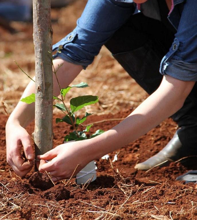 UFFS publica edital de fomento à pesquisa em Agroecologia