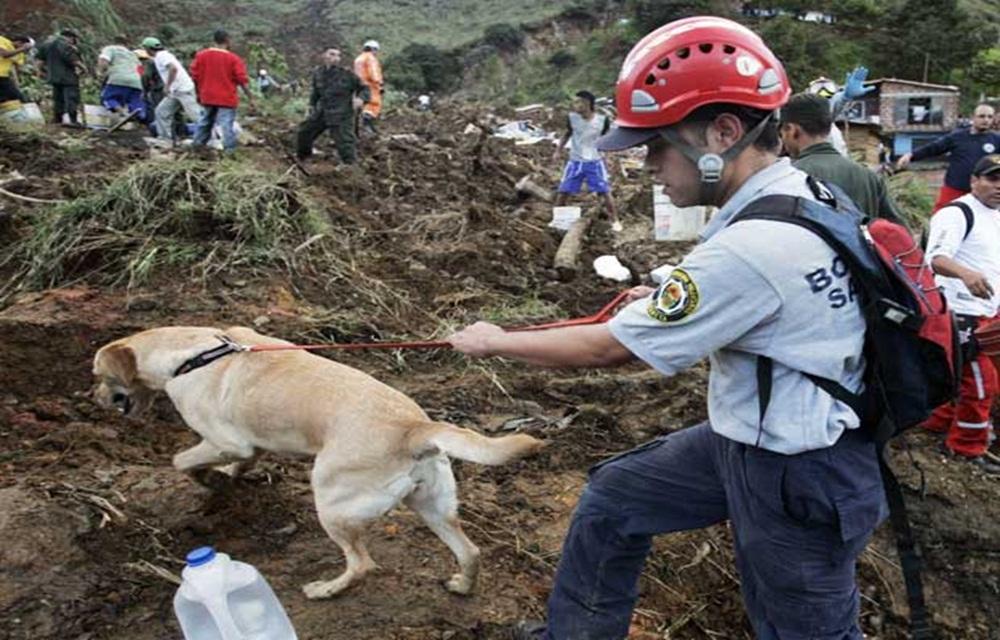 Deslizamento de terra mata pelo menos 13 pessoas na Colômbia.