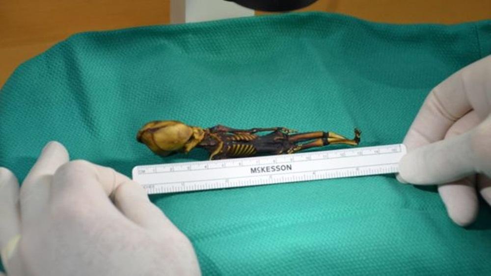 Ir para  <p><big>Embora a m&uacute;mia me&ccedil;a 13 cent&iacute;metros, o tamanho de um feto, uma primeira an&aacute;lise sugeriu que se tratava do corpo de uma crian&ccedil;a entre seis e oito...