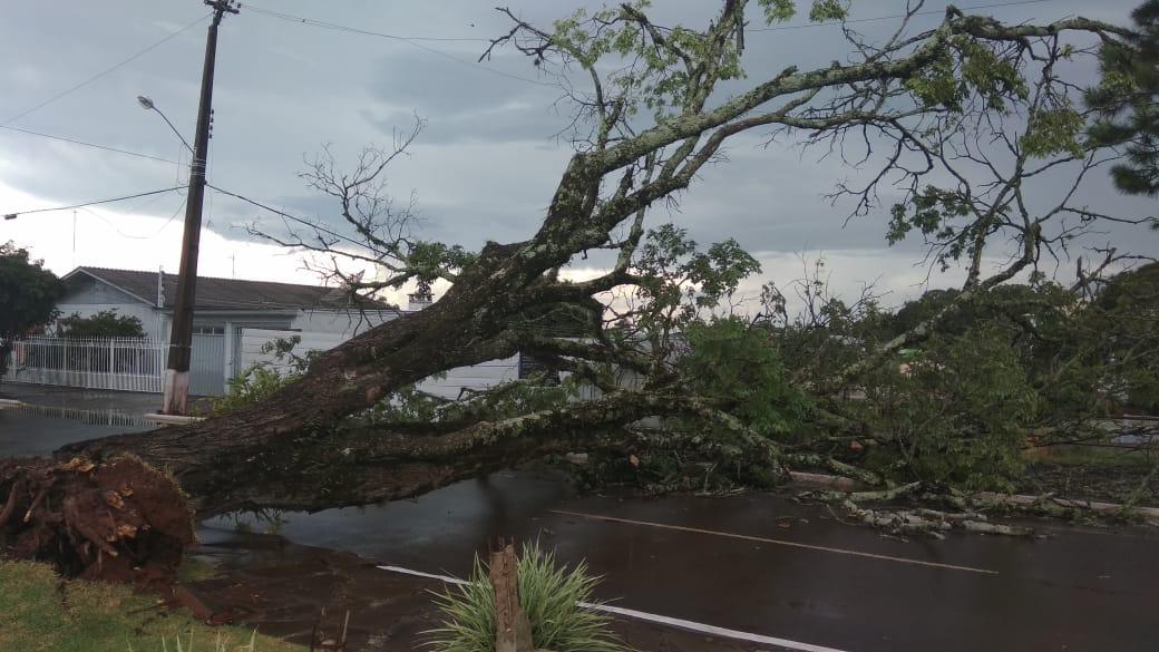 Ir para  <p>Como previam as principais agências meteorológicas do estado, esta quinta-feira tem registrado temporais em várias regiões do Rio Grande do Sul. Em Viadutos, o mau tempo teve início...