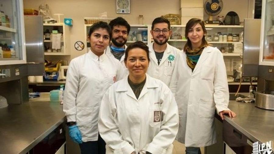 Ir para  <p><big>Eva Ramón Gallegos, pesquisadora doInstituto Politécnico NacionaldoMéxico (IPN),conseguiu erradicar completamente oVírus do Papiloma Humano...