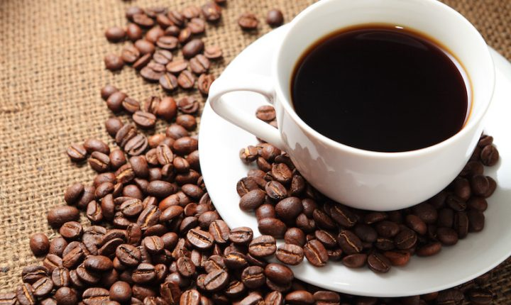 Pesquisa cria primeiros híbridos de café para a região amazônica.
