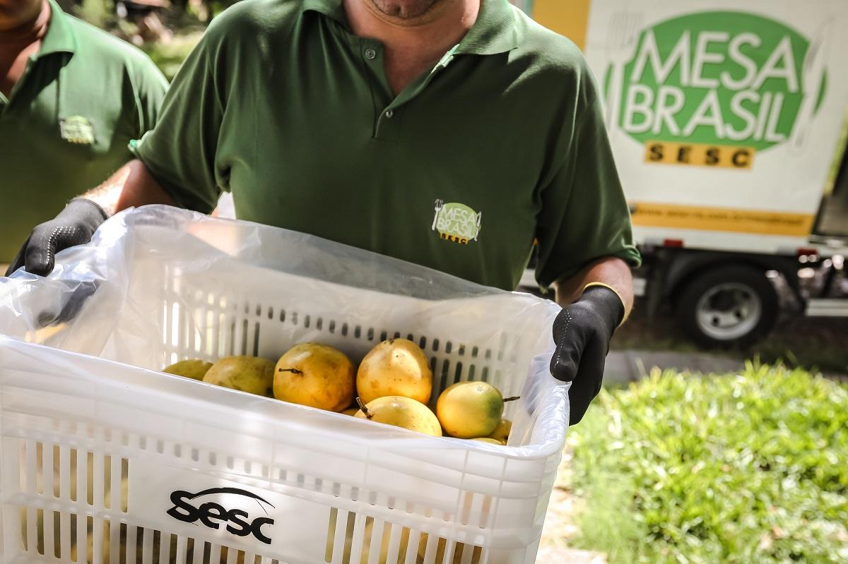 Ir para  <p><big>Aproveitando a &eacute;poca de colheita de frutas, o Programa Mesa Brasil Sesc de Erechim, realiza a campanha &ldquo;Pomares&rdquo;. Com o intuito de evitar o desperd&iacute;cio de alimentos, o Sesc arrecada de...