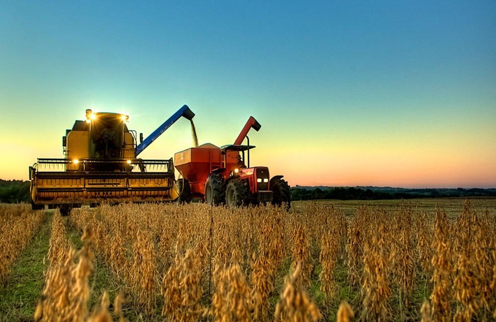Ir para  <p>Gra&ccedil;as &agrave; voracidade chinesa, a colheita da soja no Brasil, que deveria cair levemente este ano, pode aumentar no ciclo 2019/20 at&eacute; superar a dos Estados Unidos, atualmente os maiores produtores mundiais....