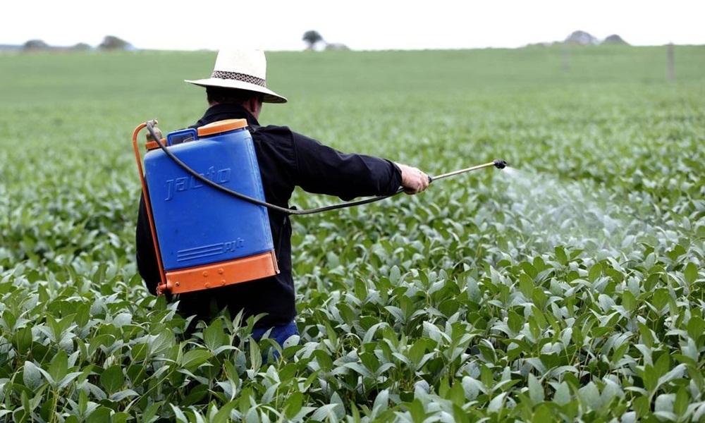 Governo federal libera mais 42 agrotóxicos no Brasil e amplia recorde desde a posse de Bolsonaro