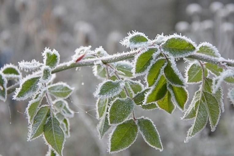 Ir para  <p>O m&ecirc;s que marca a segunda metade do ano come&ccedil;a com uma forte massa de ar frio, de origem polar, e atingir&aacute; Sul, Sudeste e Centro-Oeste do Brasil. O fen&ocirc;meno deve fazer a semana mais fria do ano...