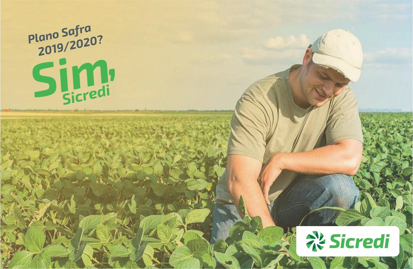 Ir para  <p><big>Seguindo seu objetivo de fomentar cada vez mais o agroneg&oacute;cio, o Sicredi vai viabilizar mais de R$ 20,1 bilh&otilde;es em cr&eacute;dito rural no Plano Safra 2019/2020, projetando atingir mais de 220 mil...