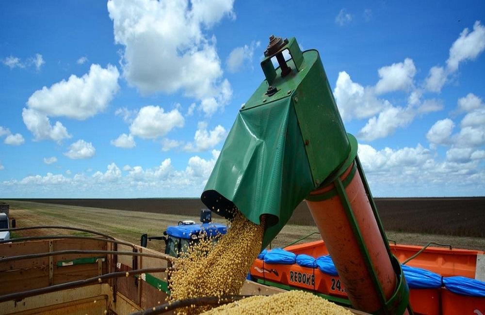 Ir para  <p>A safra agr&iacute;cola brasileira alcan&ccedil;ou um valor de produ&ccedil;&atilde;o recorde de R$ 343,5 bilh&otilde;es em 2018, um crescimento de 8,3% em compara&ccedil;&atilde;o com o desempenho registrado...