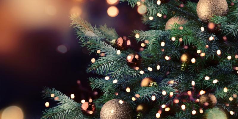 Ir para  <p>A Prefeitura Municipal de Viadutos tem a honra de convidar a comunidade, para participar das Festividades Natalinas: NATAL FAM&Iacute;LIA NA PRA&Ccedil;A, em frente &agrave; Pra&ccedil;a Izidoro Jos&eacute; Brancher...