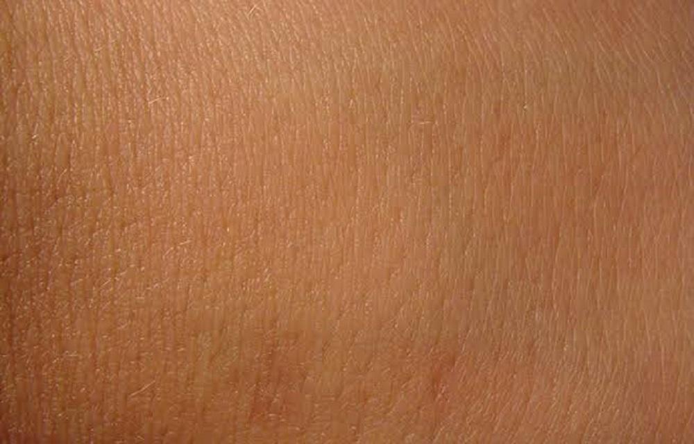 Ir para  <p>O uso de intelig&ecirc;ncia artificial no diagn&oacute;stico de c&acirc;ncer de pele vem sendo estudado em todo o mundo como um poss&iacute;vel auxiliar dos dermatologistas. Agora, uma pesquisa de cientistas brasileiros...