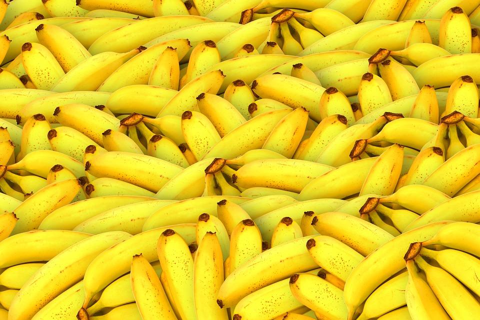 Ir para  <p>O Brasil fechou 2019 batendo recorde nas exporta&ccedil;&otilde;es de frutas. Pela primeira vez, o pa&iacute;s atingiu US$ 1 bilh&atilde;o em neg&oacute;cios, segundo dados do Minist&eacute;rio da Agricultura. As...
