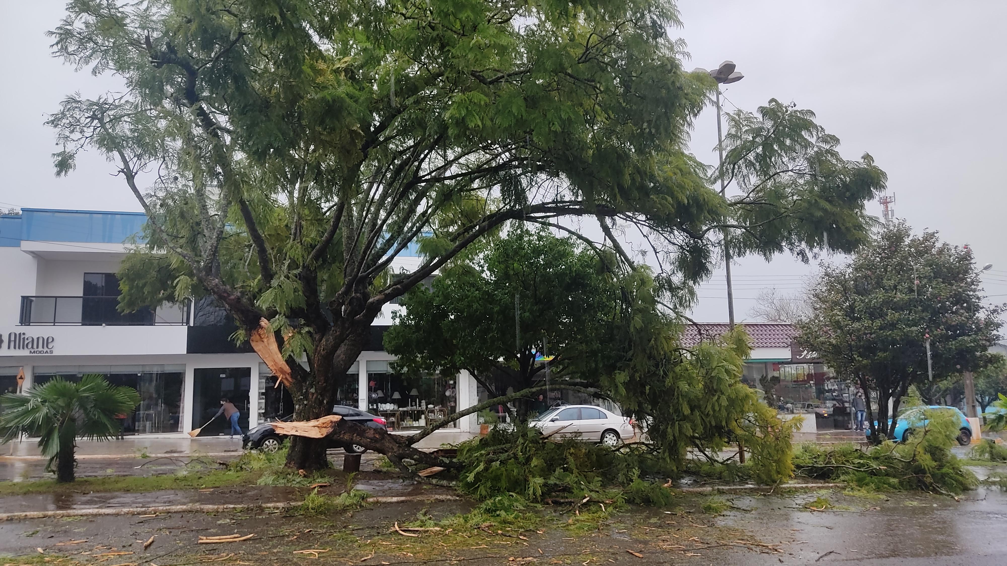 Chuva e vento forte assustam e causam danos em Viadutos