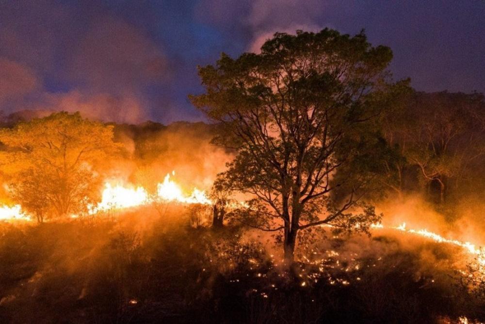 Ir para  <p>Dados do Prevfogo, o Centro Nacional de Preven&ccedil;&atilde;o e Combate aos inc&ecirc;ndios florestais do Ibama, em 2020 mostram que a &aacute;rea queimada no Pantanal j&aacute; passa de 2,3 milh&otilde;es de...
