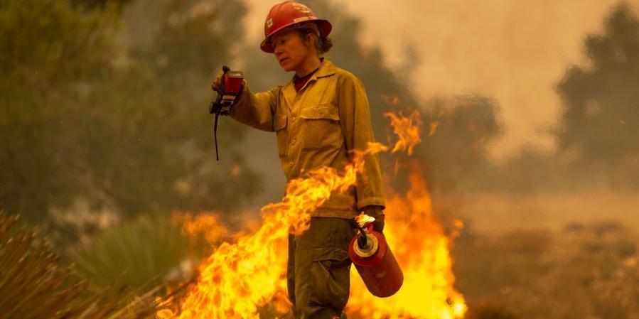 Ir para  <p>Os bombeiros continuam lutando nesta sexta-feira contra as dezenas de inc&ecirc;ndios que devastam h&aacute; alguns dias a Costa Oeste dos Estados Unidos, onde pelo menos 15 pessoas morreram e mais de meio milh&atilde;o foram...