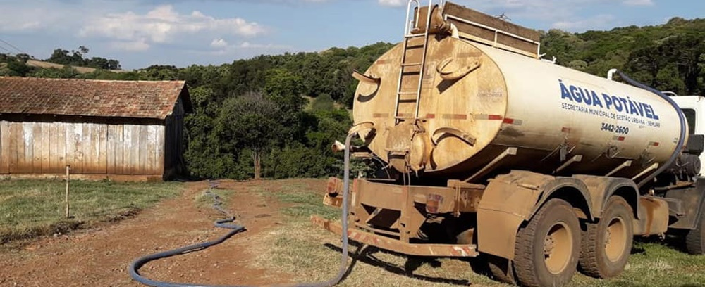 Agroindústria começa a suspender alojamento de frangos e suínos no Alto Uruguai Catarinense