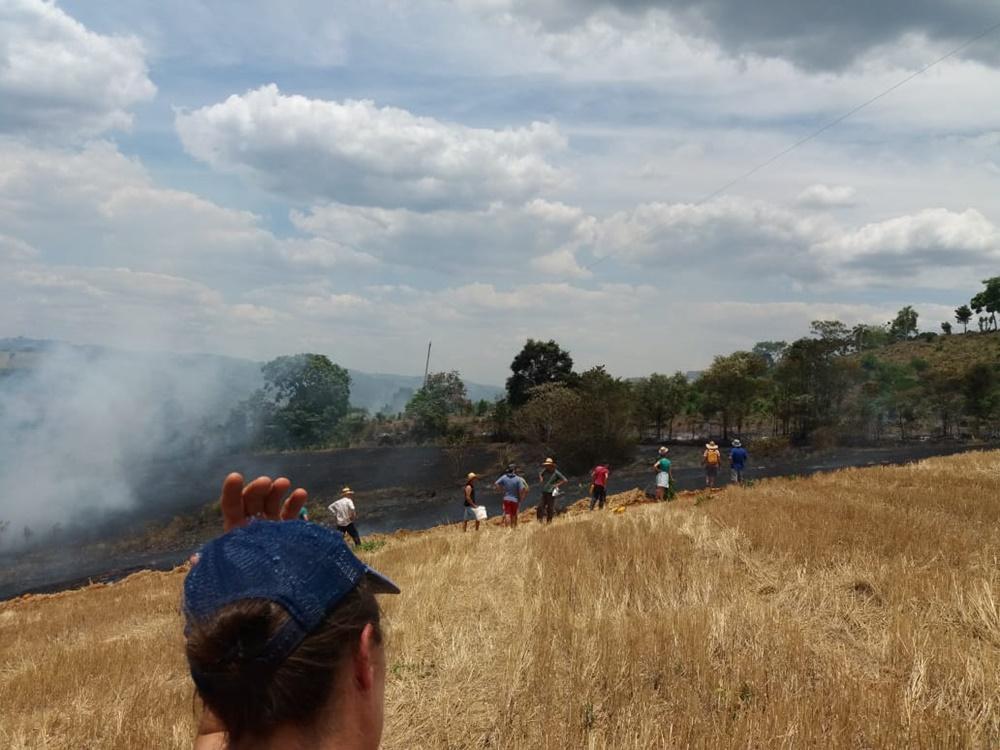 Incêndio de grandes proporções em lavoura de trigo no interior de Marcelino Ramos