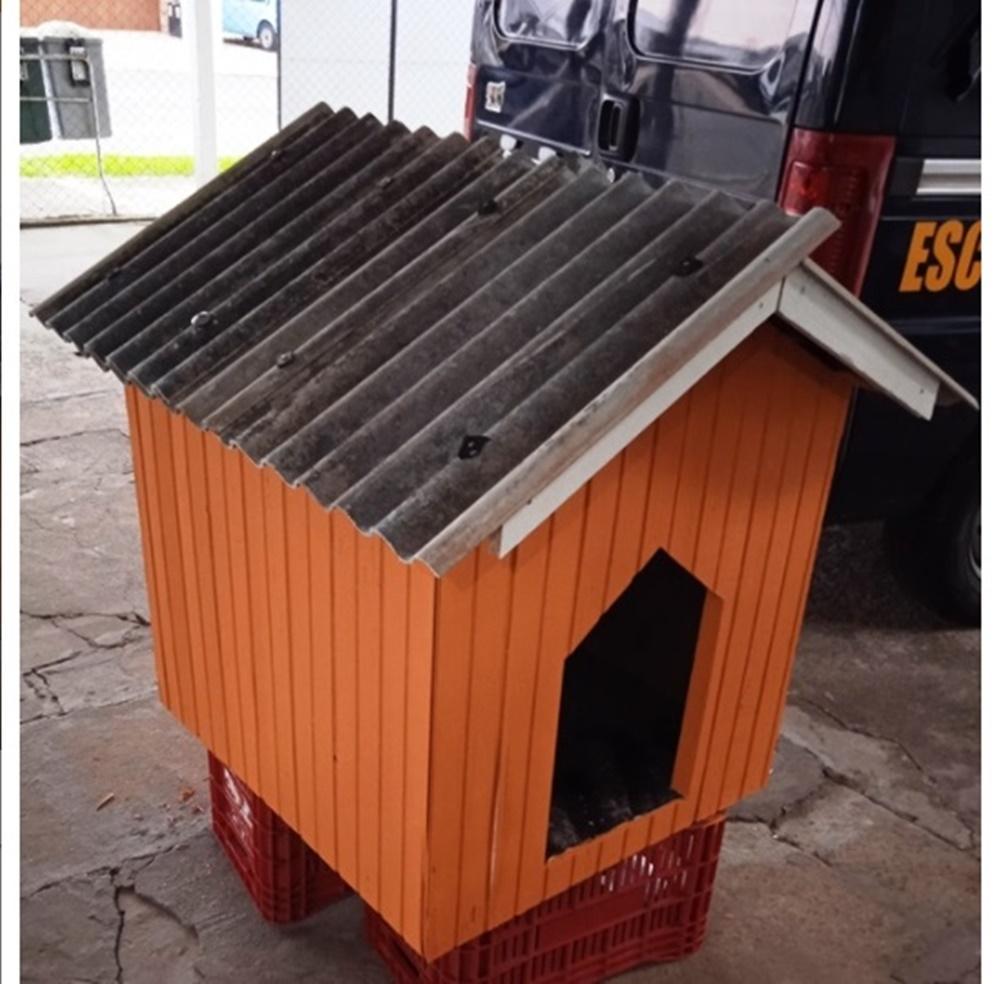 Apenados do Presídio de Erechim vão construir casinhas para animais de ONG